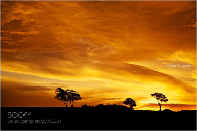 Photograph The lit sky caresses dawn  by Quim Dasquens on 500px