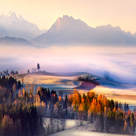 Autumn Morning by Robin Halioua on 500px.com