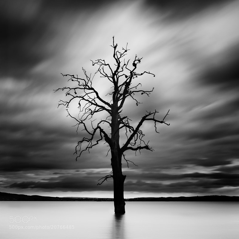 Photograph Solitude by Jozef Micic on 500px