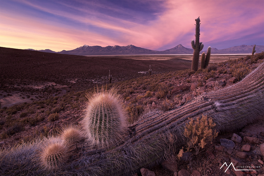 Photograph Paisaje Escondido by Matteo Zanvettor on 500px