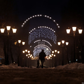 Winter lights by Joanna Lemanska (MissCoolpics)) on 500px.com