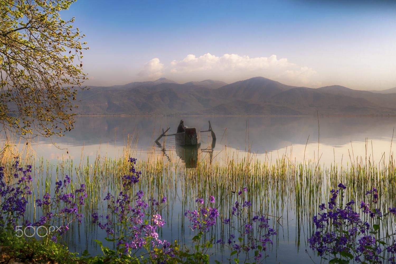 Spring in Lake