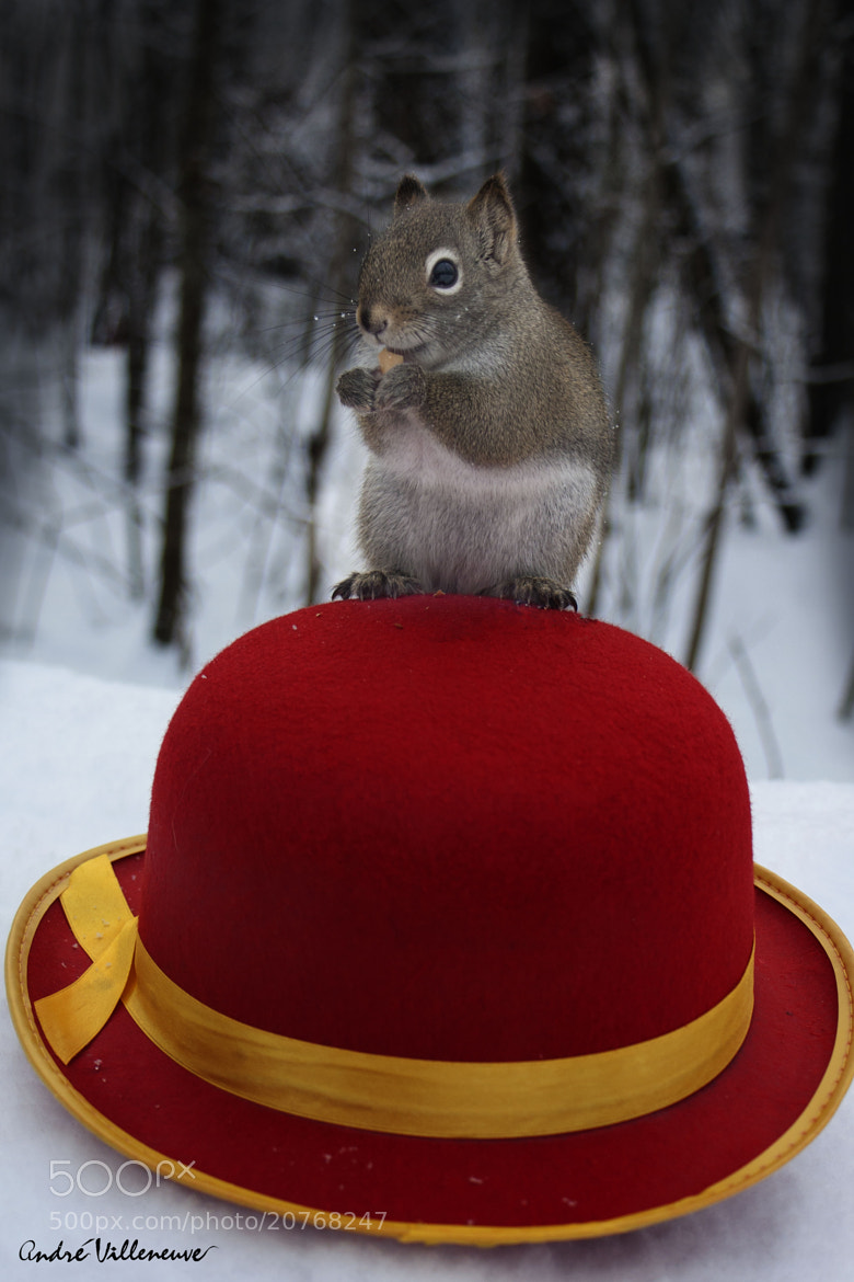 Photograph The red hat by Andre Villeneuve on 500px