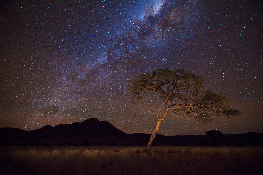 Photograph African Nights by Hougaard Malan on 500px