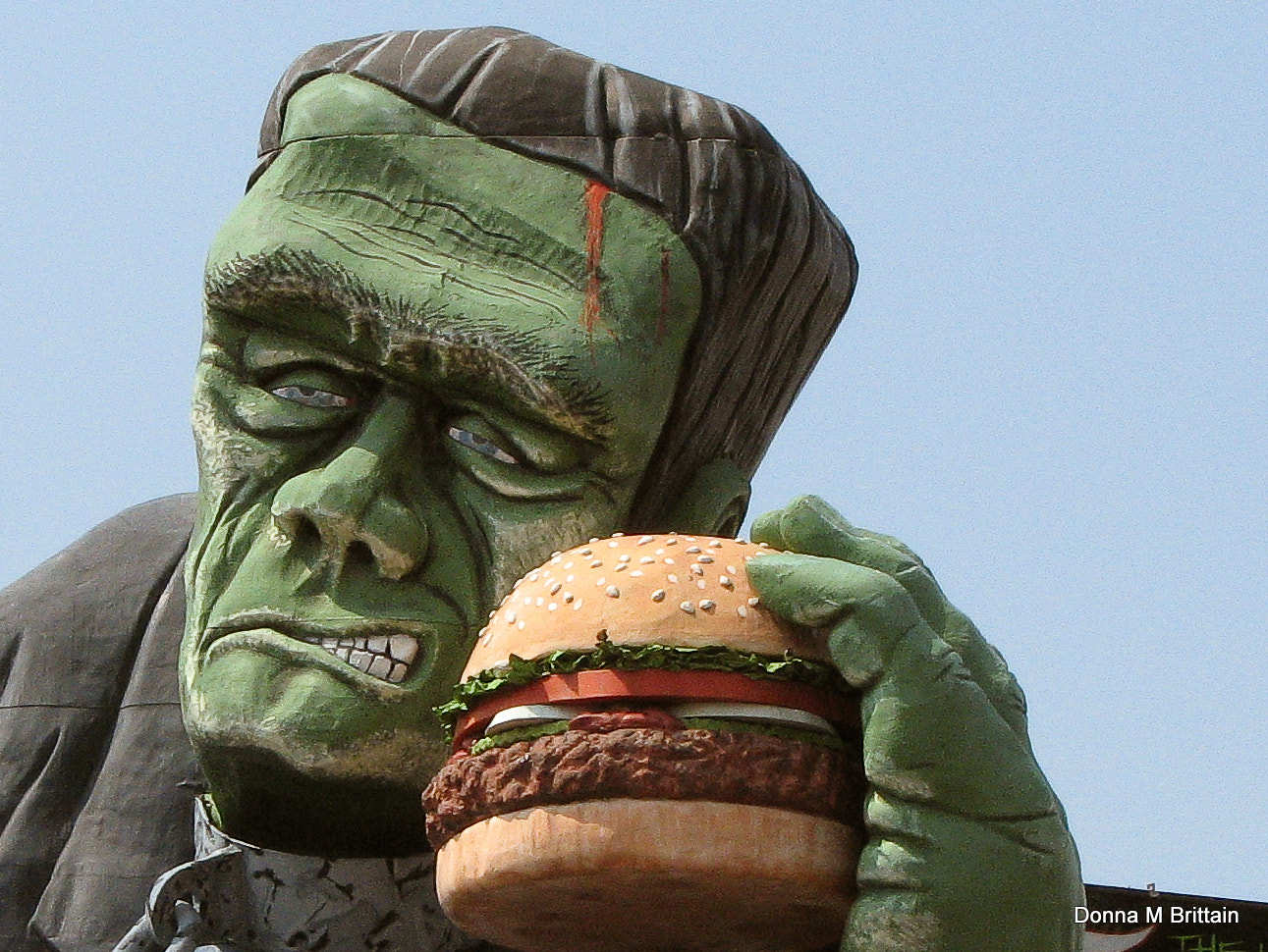 Photograph Monster Burger by Donna Brittain on 500px