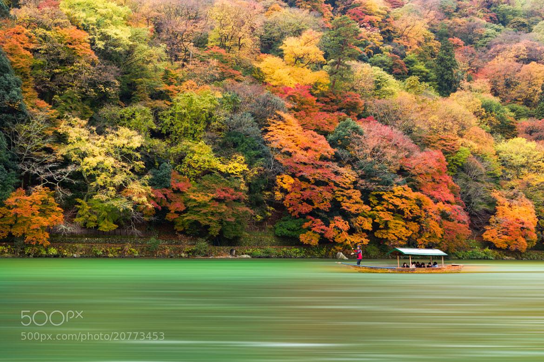 Photograph Autumn by Yoshitada Kurozumi on 500px