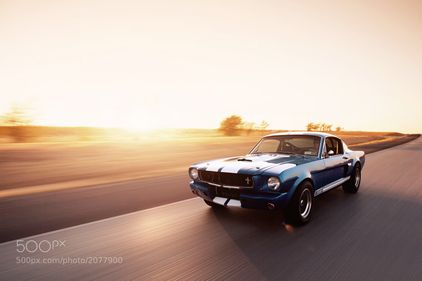 Photograph 1965 Shelby GT350SR by James Evins on 500px