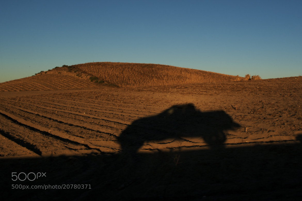 Photograph On the road by Cristobal Garciaferro Rubio on 500px