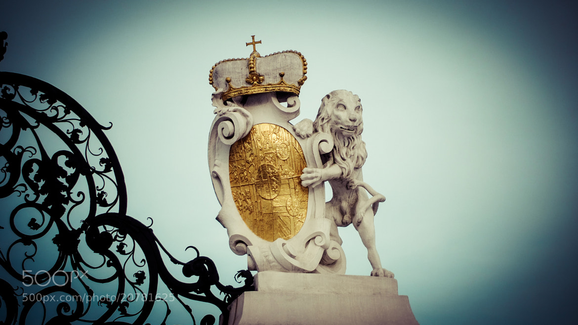 Photograph Golden Lion by Gary Denness on 500px