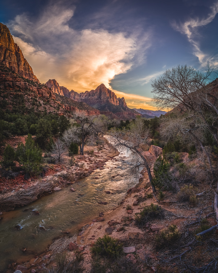 Zion National Park XXV