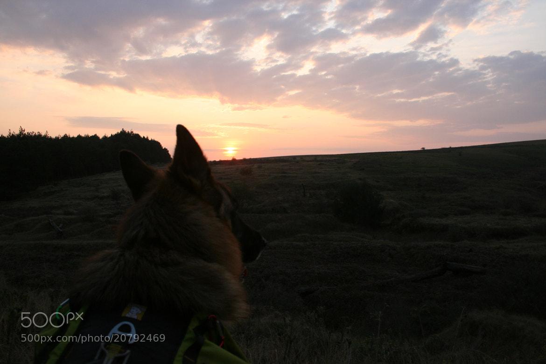 Photograph Sunrise by Steven Mavromatis on 500px