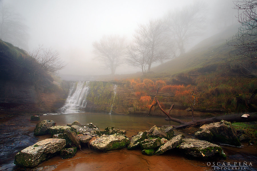 Photograph - Misty river - by Oscar  Peña on 500px