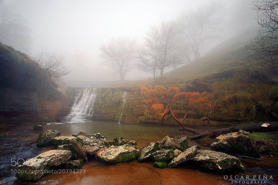 Photograph - Misty river - by Oscar  Peña on 500px
