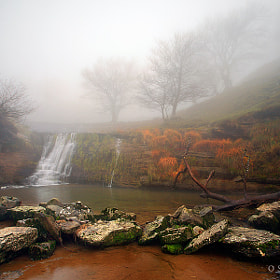 - Misty river - by Oscar  Peña (oscarpfotografia)) on 500px.com