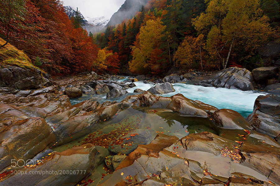 "Photograph ""Autumn Power II "" by Juan Pavon on 500px"