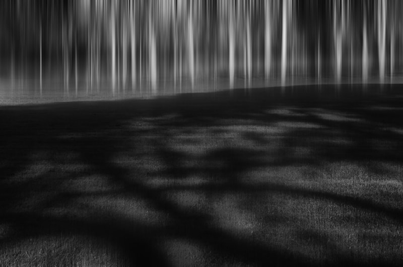 Photograph Midday Shadows by Anne McGrath on 500px