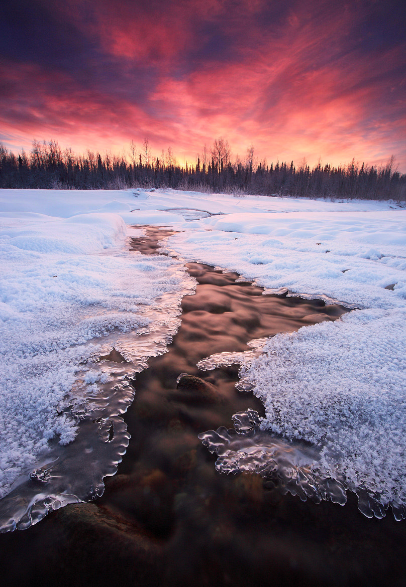 Photograph Decembers Chill by Ron Perkins on 500px