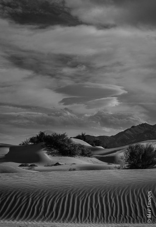Photograph Sand Ripples in Black and White by Michael Flaherty on 500px