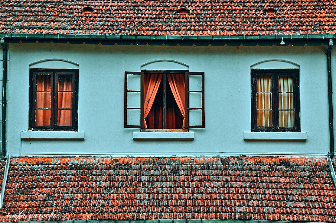 Photograph Windows by Wafa Yareemi on 500px