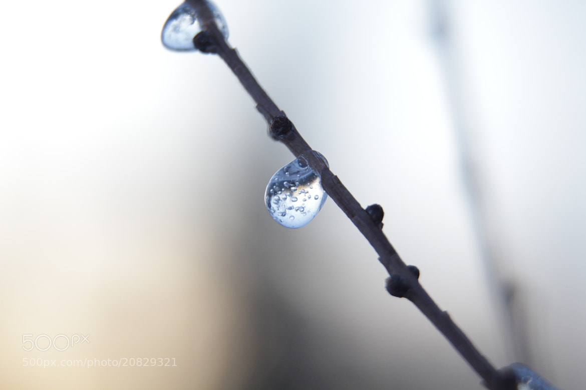 Photograph Iced waterdrop by Benoît Turcotte on 500px