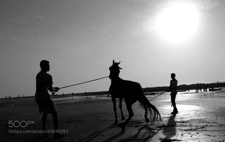 Photograph Rebel!! by Raju Rhee on 500px