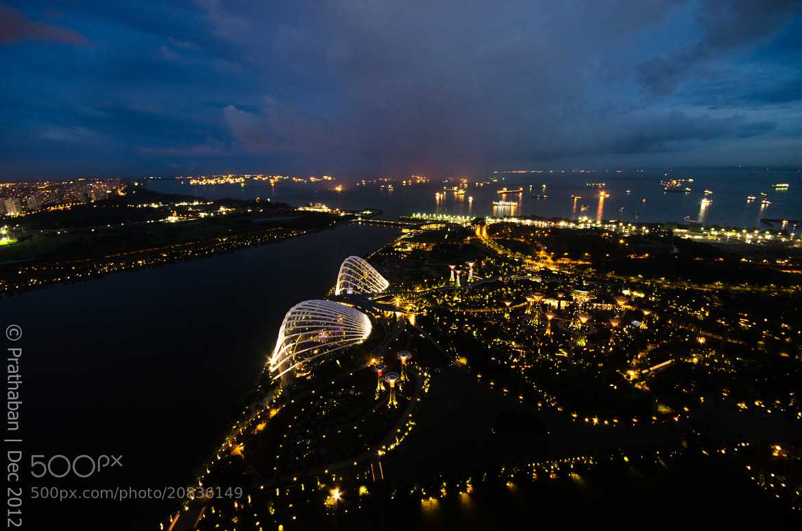 Photograph Gardens by the bay from top by Prathaban Umapathysarma on 500px