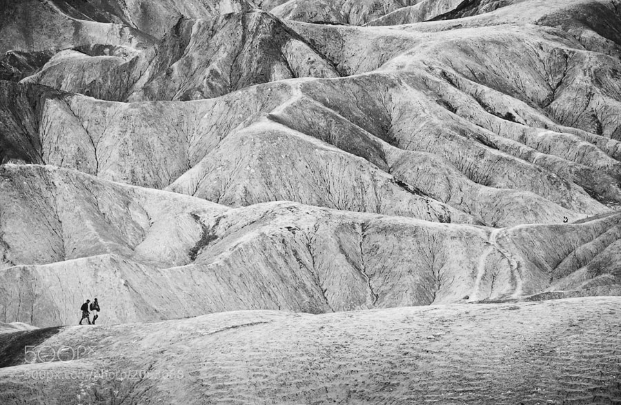 Photograph Life in Death Valley by joosarang on 500px