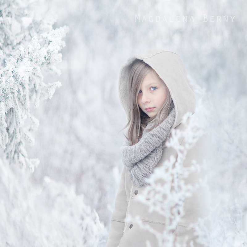Photograph Winter Has Come by Magdalena Berny on 500px