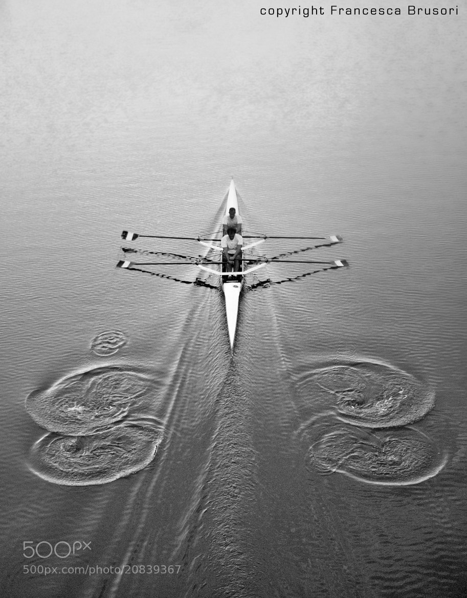 Photograph Rowers in Florence by Francesca Brusori on 500px
