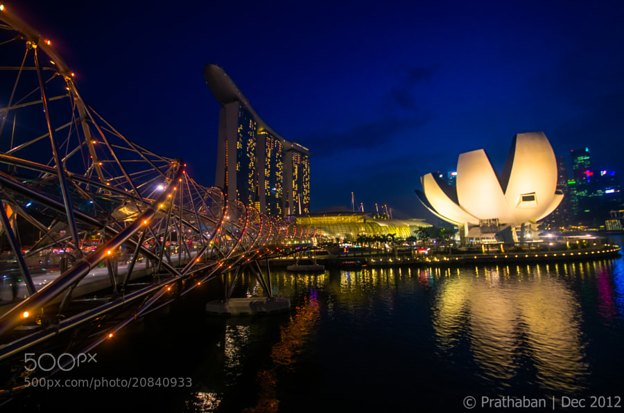 Photograph MBS Flower by Prathaban Umapathysarma on 500px