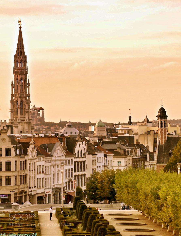 Photograph Vespre de tardor a Brussel·les by David Bargalló  on 500px