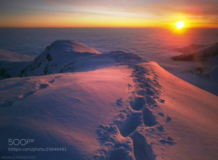 Photograph Sunrise over a sea of clouds by Branislav Brankov on 500px