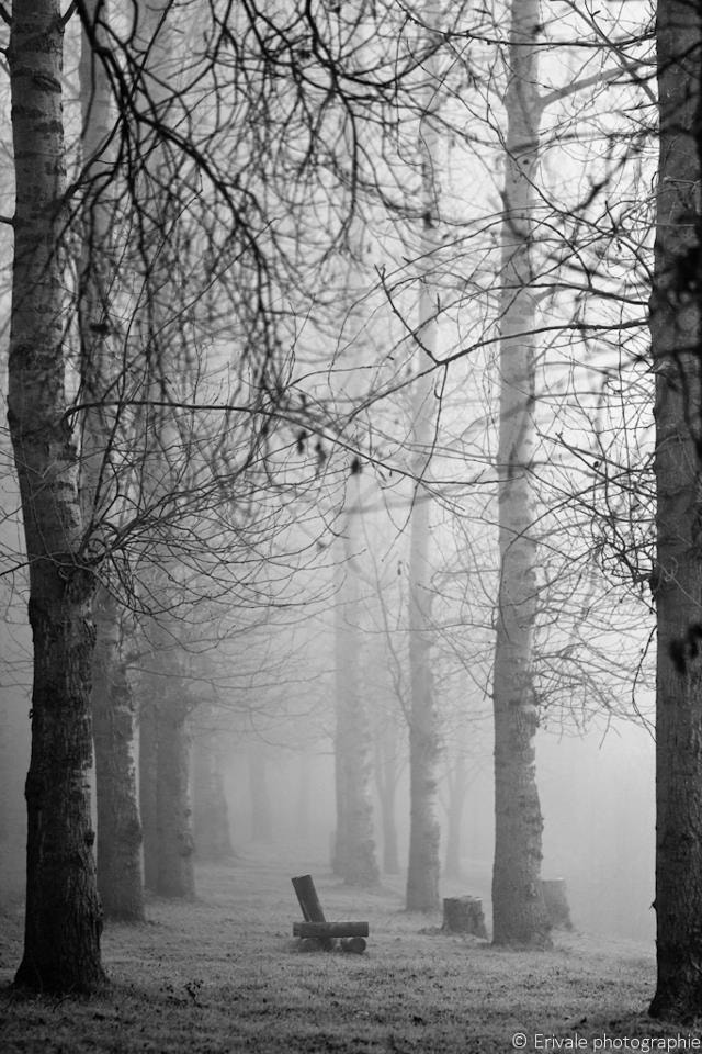 Photograph Solitude by Valérie Charlier on 500px
