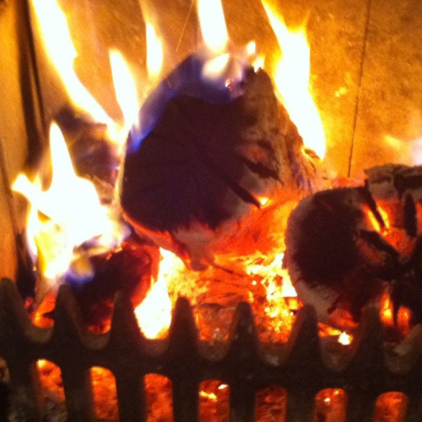 Photograph Baked potatoes from the woodburner for tea. Yum by Steve Butterworth on 500px