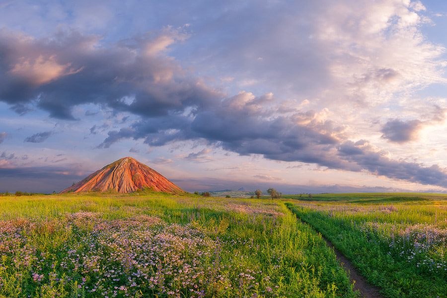 Photograph On a morning footpath by Dmytro Balkhovitin on 500px