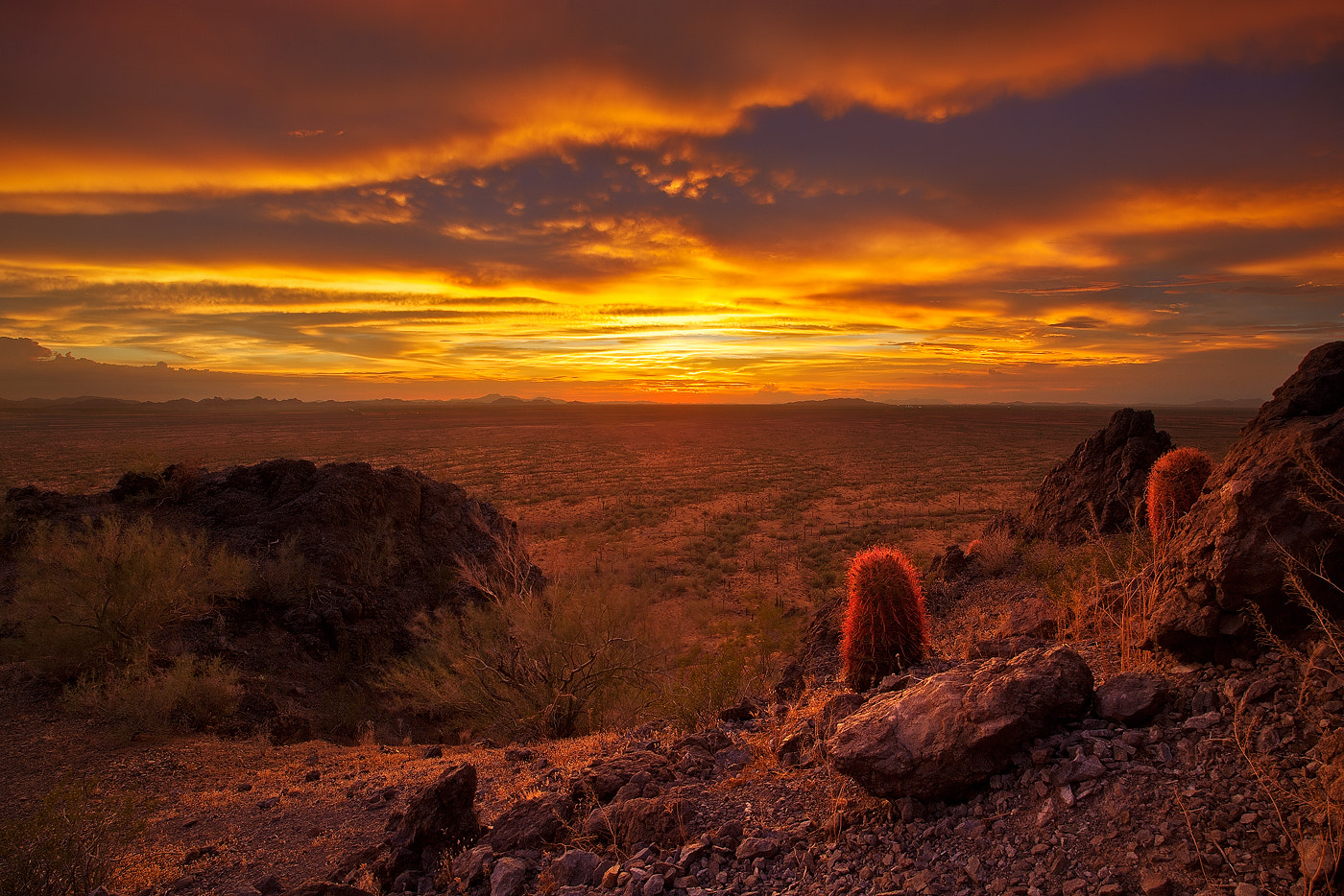 Photograph End of Days by Dee Nichols on 500px