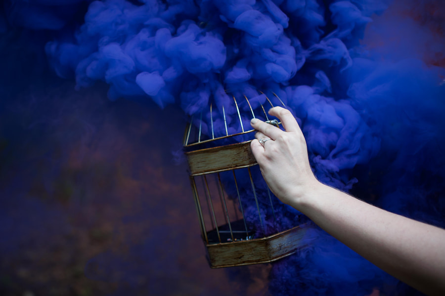 Smoking Birdcage by PJ Accetturo on 500px.com