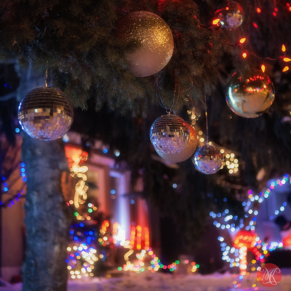 Photograph Christmas on Candy Cane Lane 2 by Kasia Sokulska on 500px