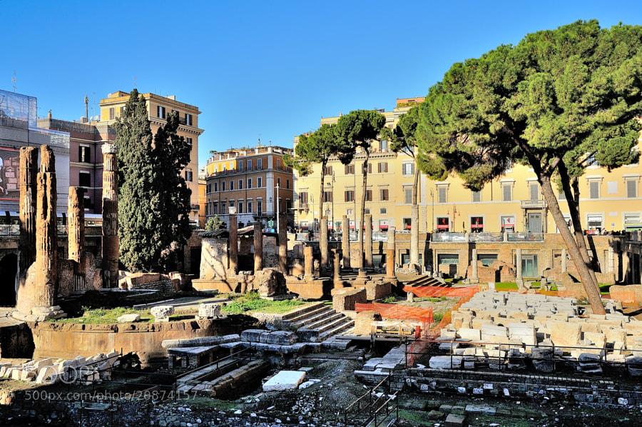 Rome: Area Sacra di Torre Argentina.