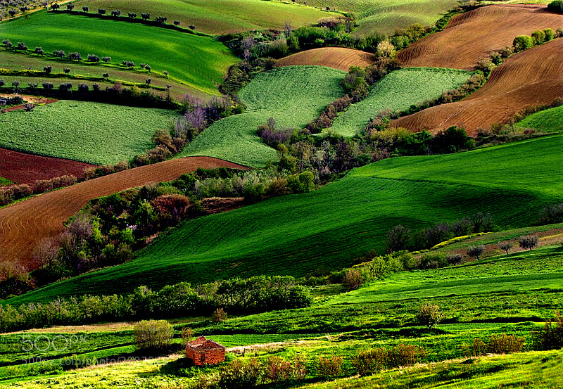 Photograph colors on the hills by ivo pandoli on 500px