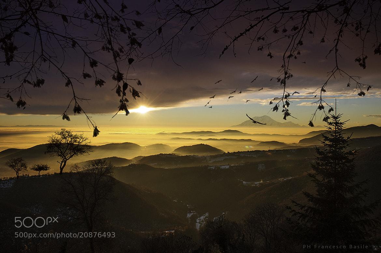 Photograph magica luce by Basile Francesco on 500px