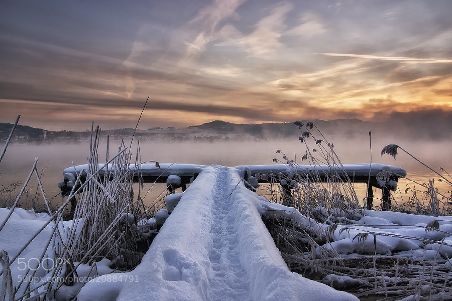 Photograph cold morning by Sandra Löber on 500px