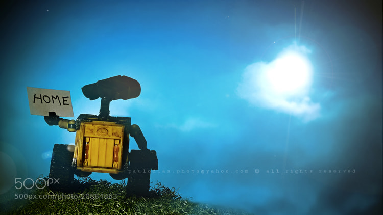 Photograph WALL-E Series:  me go home... by Paulo Dias on 500px