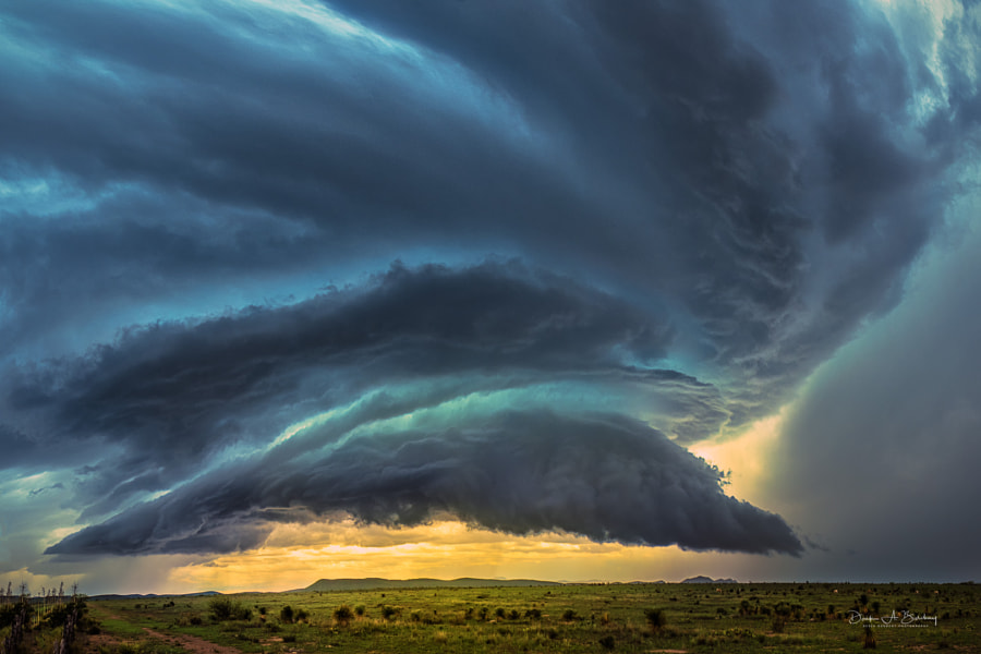 Trouble in Texas by Derek Burdeny
