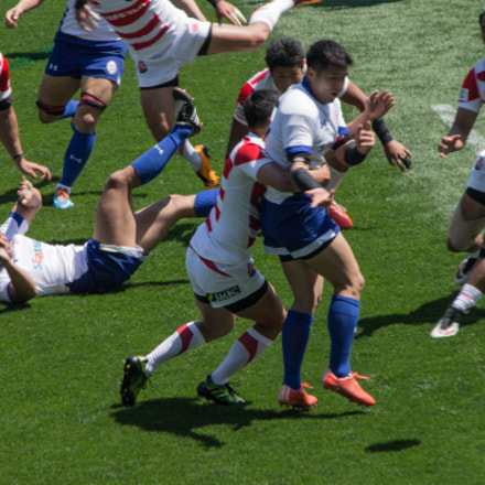 Some hard tackles!, Canon EOS REBEL T3, Canon EF-S 55-250mm f/4-5.6 IS II