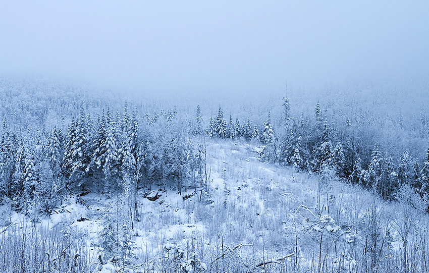 Photograph Fog and Snow by Frank Audet on 500px