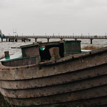 old fish cutter, Canon EOS 400D DIGITAL, Canon EF 50mm f/1.8 STM