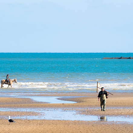 Near Arromanches, Normandy, Fujifilm X-T2, XF100-400mmF4.5-5.6 R LM OIS WR