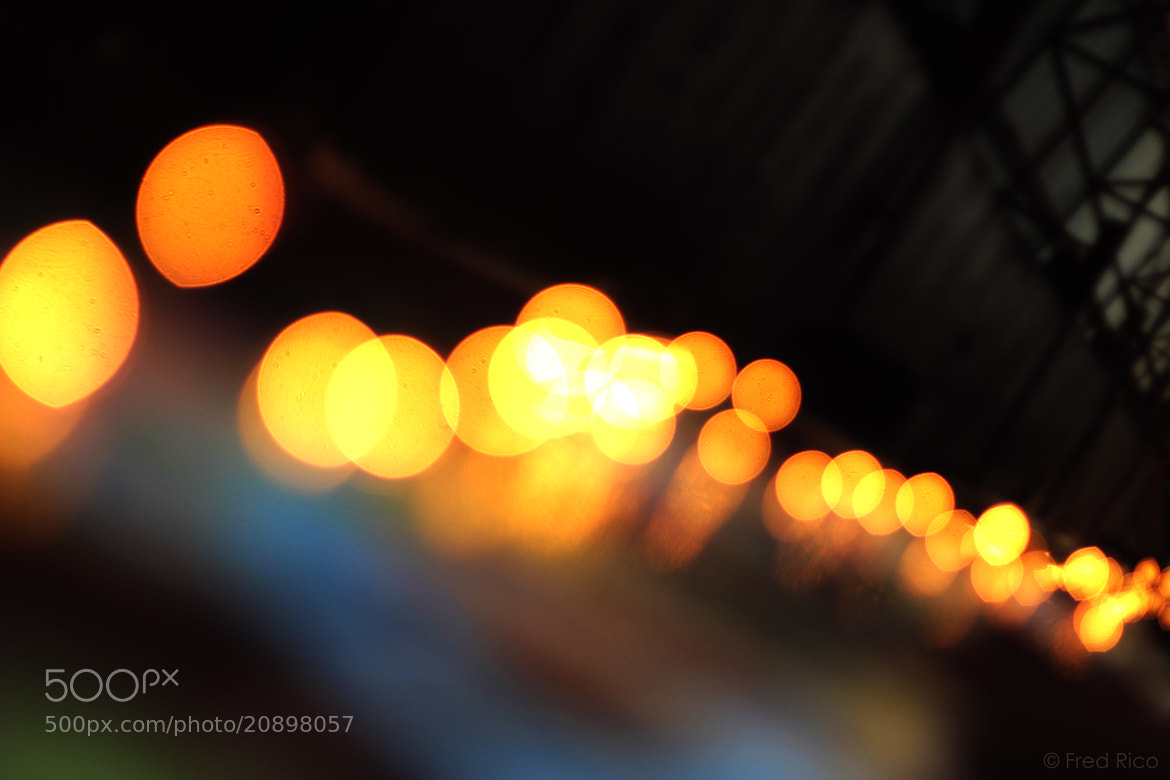 Photograph Bokeh by Frederick Irving Rico on 500px