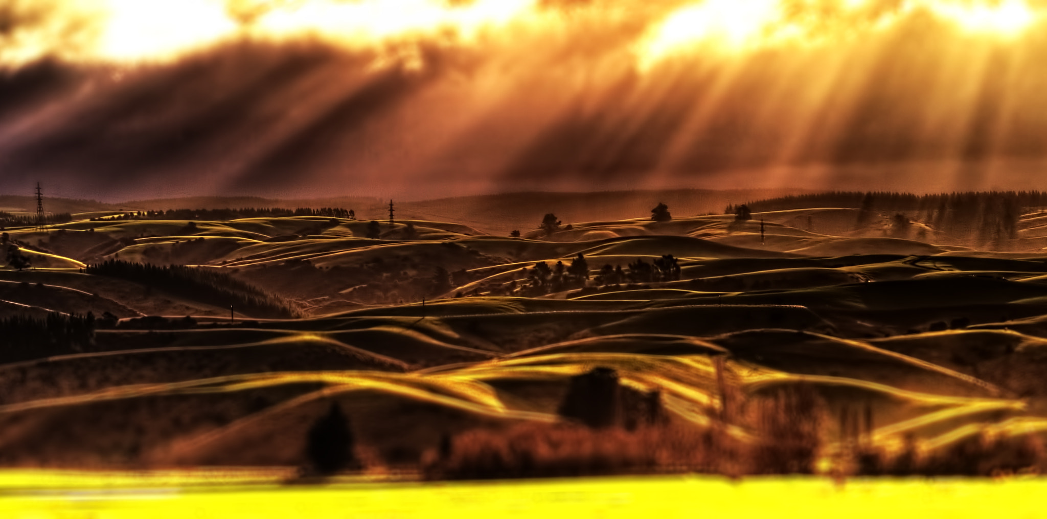 Photograph Shadowland by The Light Foreboding on 500px